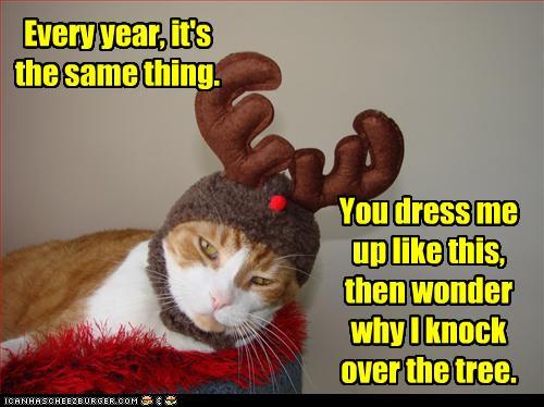 antler-kitty.jpg