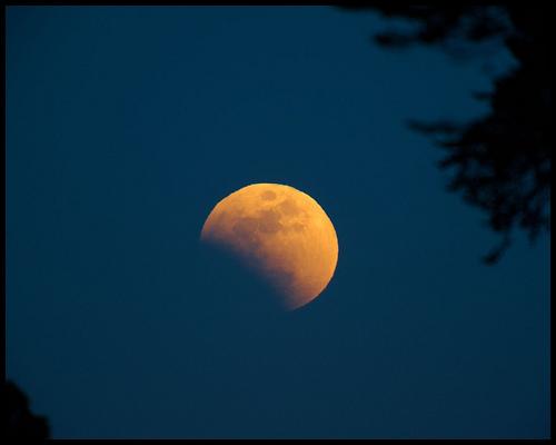 bad-moon.jpg
