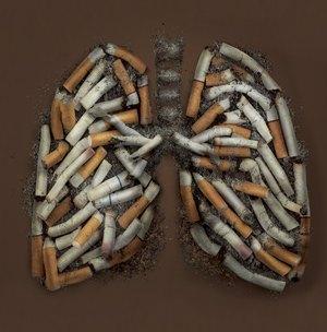ciggi-lungs.jpg