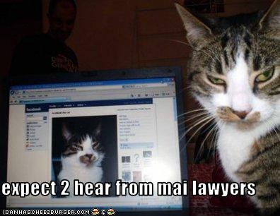 facebook-kitty-lawyers-up.jpg