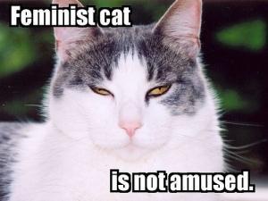 feminist-cat.jpg