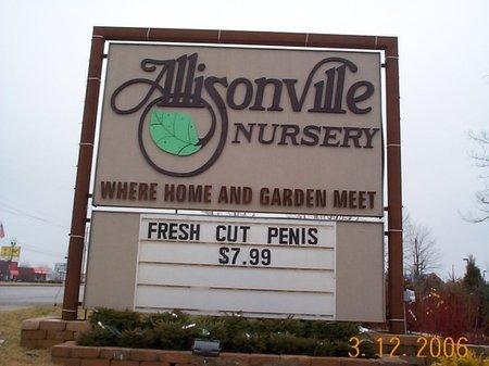 fresh-cut-penis.jpg