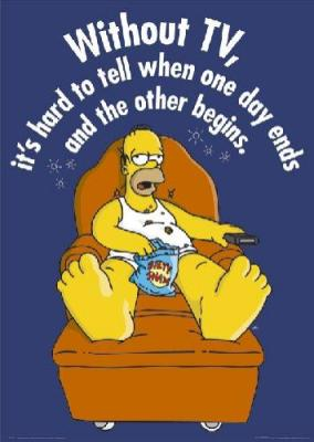 Homer Simpson watches Venezuelan private TV. Explains a lot!