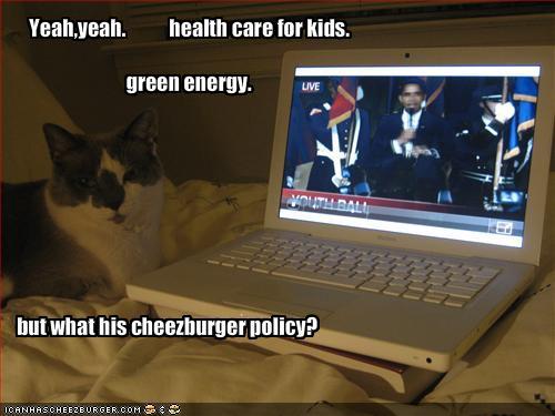 hopey-kitty.jpg