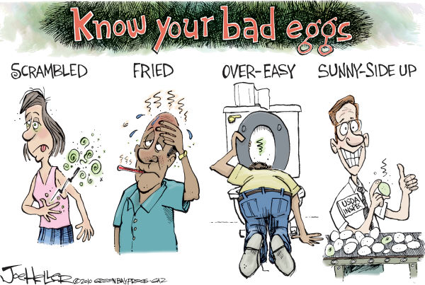 know-bad-eggs.jpg