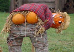pumpkin-moon.jpg