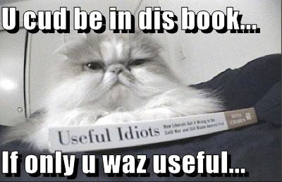 If only those idiots were useful, eh kitty?