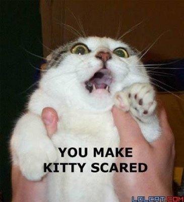 you-make-kitty-scared.jpg